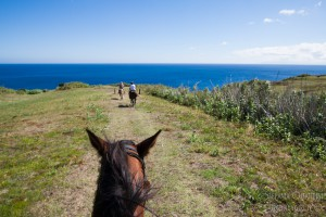 FAIAL_PATIO HORSE & LODGE_LOOSITANO TRAIL_AZZORRE